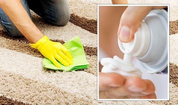 Carpet Cleaning Idea